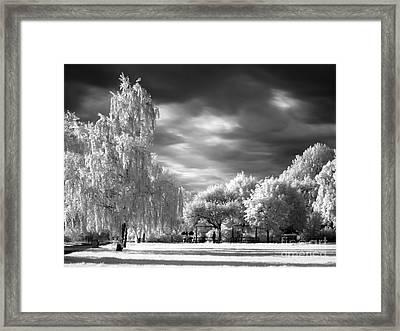 Infra Red Park Framed Print