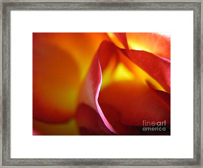 Framed Print featuring the photograph Inner Flame by Stacey Zimmerman