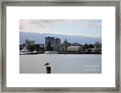 Inner Harbor Victoria Canada  2 Framed Print by Tanya  Searcy