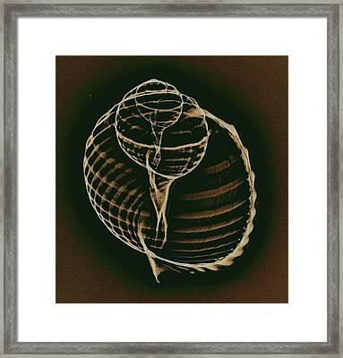 Inner Worlds Framed Print by Sara Koenig King