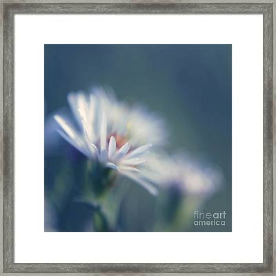 Innocence - 03 Framed Print by Variance Collections