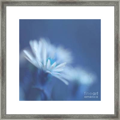 Innocence 11 Framed Print by Variance Collections
