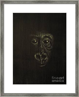 Innocense Framed Print by Annemeet Hasidi- van der Leij