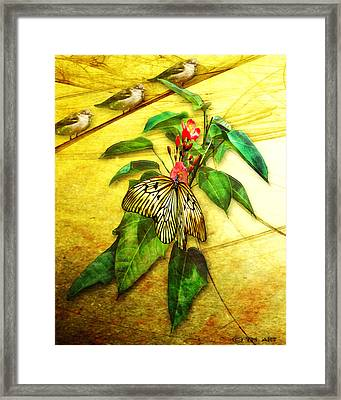 Insect - Butterfly - Sparrow - Happy Summer  Framed Print by Yvon van der Wijk