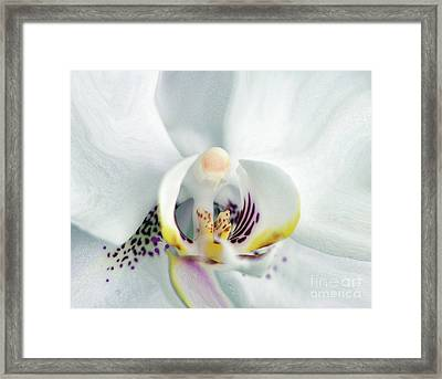 Inside Job.... Framed Print