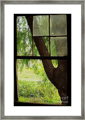 Framed Print featuring the photograph Inside Looking Out by Blair Stuart