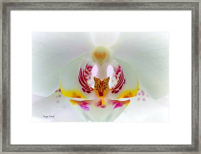 Inside My World..... Framed Print