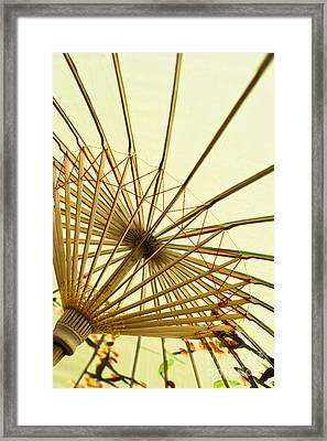 Inside Of Parasol Framed Print by Sam Bloomberg-rissman