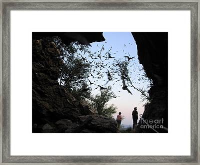 Inside The Bat Cave Framed Print