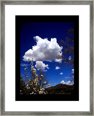 Framed Print featuring the photograph Inside The Mind Of Spring by Susanne Still