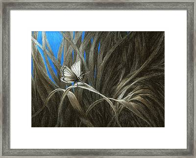 Insignificant Framed Print by Shawn Kawa