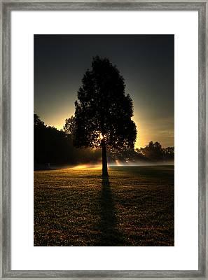 Inspirational Tree Framed Print