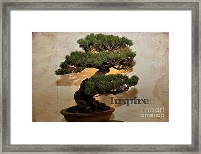 Framed Print featuring the photograph Inspire by Tamera James