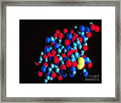 Insulin Molecule Framed Print