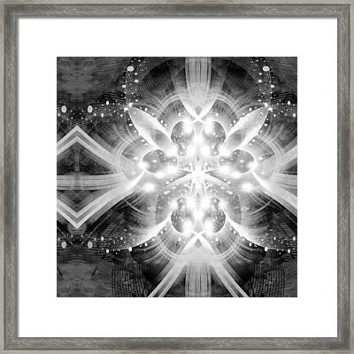 Intelligent Design Bw 2 Framed Print