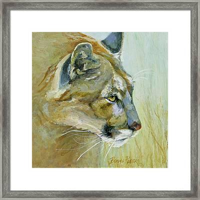 Intense Cougar Framed Print by Bonnie Rinier