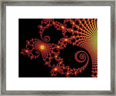 Intense Framed Print by Ester  Rogers