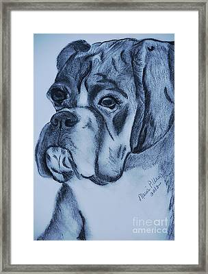 Intensely Gazing Framed Print by Maria Urso