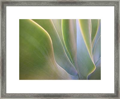 Interlude I Framed Print