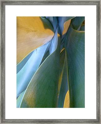 Interlude II Framed Print