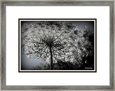 Intertwine Framed Print