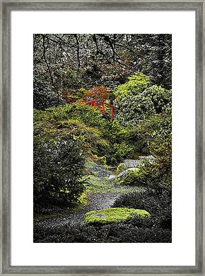 Intimate Garden Framed Print by Ken Stanback