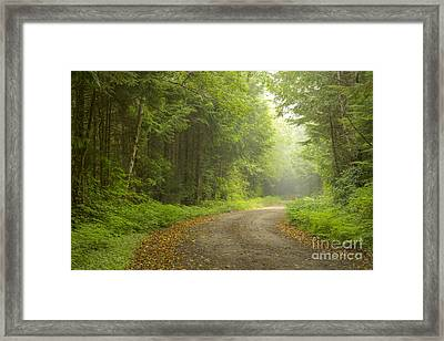 Into The Beyond Framed Print by Idaho Scenic Images Linda Lantzy