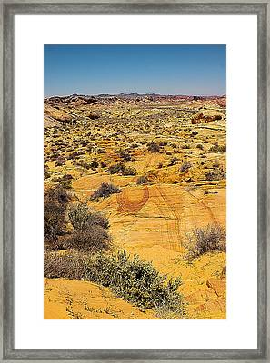 Into The Brush Framed Print by Ryan Baxter