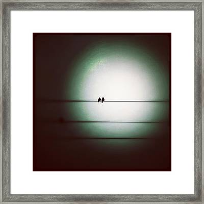 Into The Light - Instagram Photo Framed Print by Marianna Mills