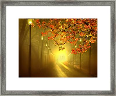 Into The Light Framed Print by Igor Zenin