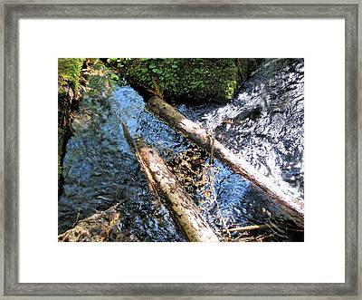 Into The Mckenzie Framed Print