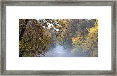 Into The Mist Framed Print by Bill Cannon