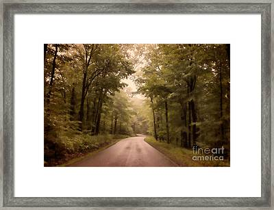 Into The Mists Framed Print by Lois Bryan