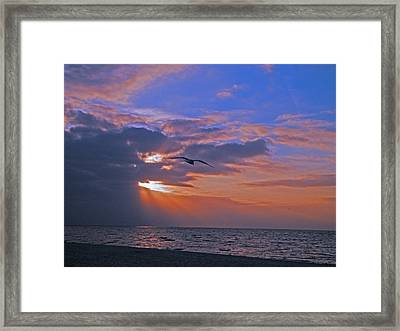 Framed Print featuring the photograph Into The Misty Morning Sun by Brian Wright