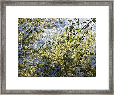 Into The River Framed Print