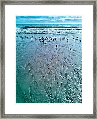 Into The Sea Framed Print by Mandy Willis