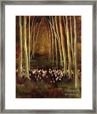 Into The Woods-tulips Framed Print