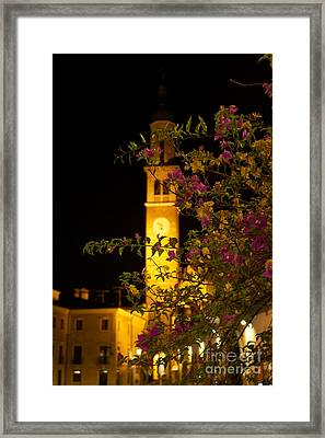 Inviting Beauty Framed Print