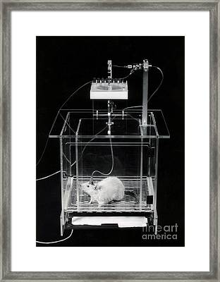 Involuntary Response Conditioning Framed Print by Omikron