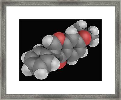 Ipriflavone Drug Molecule Framed Print by Laguna Design