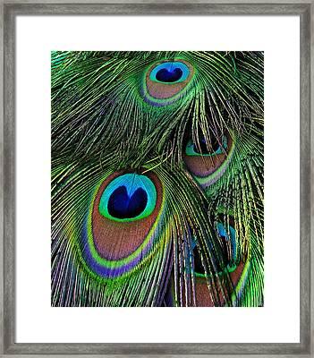 Iridescent Eyes Framed Print