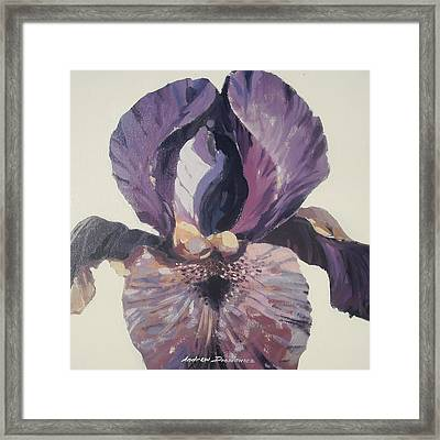 Iris 1 Framed Print