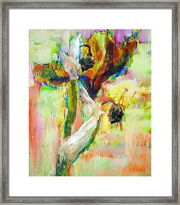 Iris 13 Framed Print by Petro Bevza