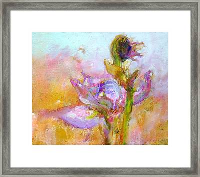 Iris 25 Morning Framed Print by Petro Bevza