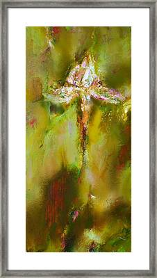 Iris 9 Beethoven Framed Print by Petro Bevza