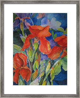 Iris Ablaze Framed Print