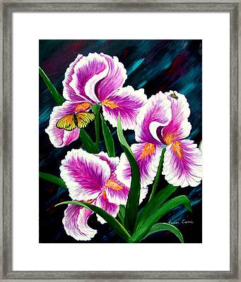 Iris And Insects Framed Print