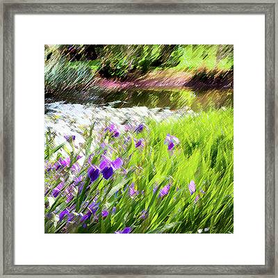 Iris And Water Framed Print by Linde Townsend