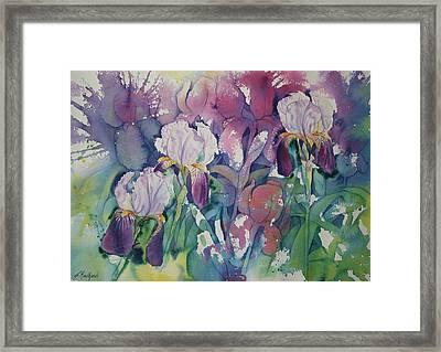 Iris Garden Framed Print by Leslie Redhead