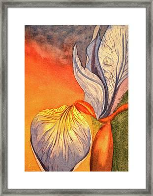 Framed Print featuring the painting Iris Moody by Teresa Beyer